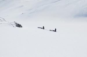 Flotte forhold for ski og hundekjøring ved nordytjønna 3.5.2015
